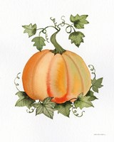 Pumpkin and Vines II Fine Art Print