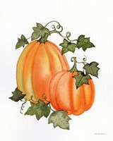 Pumpkin and Vines I Fine Art Print