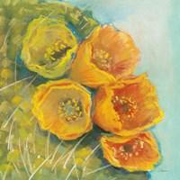 Blooming Succulent II Fine Art Print