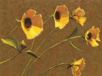 Sunny Flowers III Fine Art Print