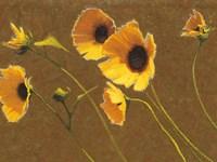 Sunny Flowers I Fine Art Print