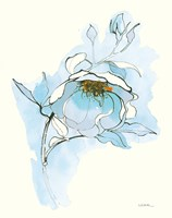 Carols Roses V Blue Fine Art Print