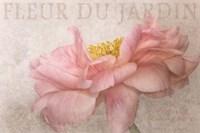 Garden Flower Fine Art Print