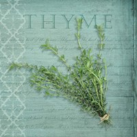 Classic Herbs Thyme Framed Print