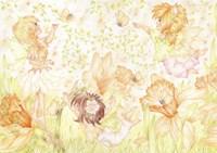 Clementines Fine Art Print