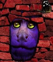Stone Monkey Fine Art Print