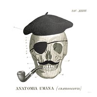 Dandy Bones VI Fine Art Print