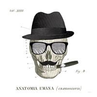 Dandy Bones V Fine Art Print