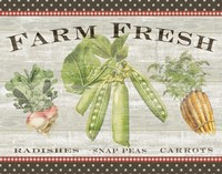 Farm Fresh Fine Art Print