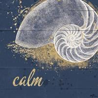 Calm Seas IX Framed Print
