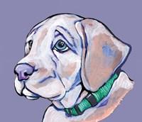 Puppy II Fine Art Print