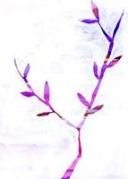 Leaf Trio II Framed Print