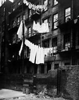 1930s Tenement Building With Laundry Fine Art Print