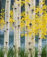 Yellow Aspen Leaves Fine Art Print