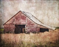 Red Shed Fine Art Print