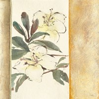 Ochre Rhododendron Fine Art Print