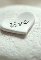 Live Pebble Heart - Still Life Fine Art Print