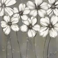Monochrome Daisies Fine Art Print