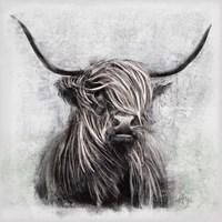 Highlander Fine Art Print