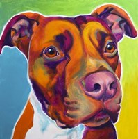 Pit Bull - Red Fine Art Print