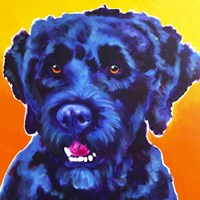 Portuguese Water Dog - Banks Fine Art Print