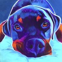 Rottie - Dexter 2 Fine Art Print