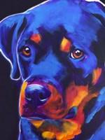 Rottie - Dexter Fine Art Print