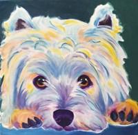 Westie - Chispy 2 Fine Art Print