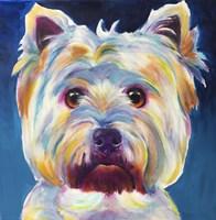 Westie - Chispy Fine Art Print