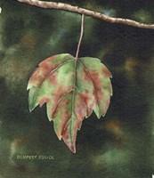 One Leaf Left Fine Art Print