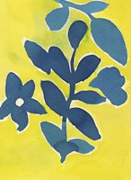 Jardin Amarillo Fine Art Print
