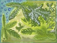 Jungla Mexicana Fine Art Print