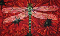 Dragonfly And Poppies Fine Art Print