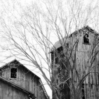 Barn Windows Fine Art Print