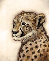 Cheetah Portrait Fine Art Print