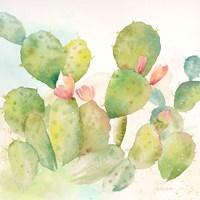 Cactus Garden I Framed Print