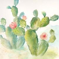 Cactus Garden III Framed Print