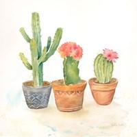 Cactus Pots III Framed Print