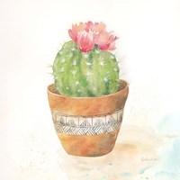 Cactus Pots IV Framed Print
