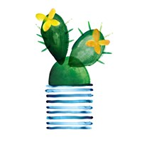 Colorful Cactus I Fine Art Print