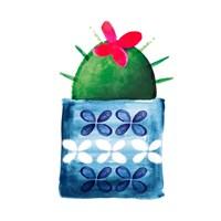 Colorful Cactus IV Fine Art Print