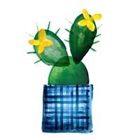 Colorful Cactus VIII Fine Art Print