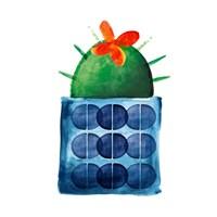 Colorful Cactus VIIII Fine Art Print