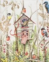 Birdhouse Fine Art Print