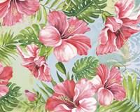 Hibiscus Paradise II Fine Art Print