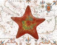 Nautical Treasures-K Fine Art Print