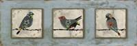 Bird Trio Fine Art Print
