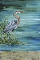 Great Blue - Heron - 2 Fine Art Print