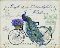 Peacock On Bicylce II Fine Art Print
