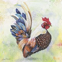 Watercolor Rooster - A Fine Art Print